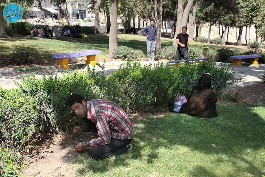 حاکمیت معتادها بر فضای پارکها