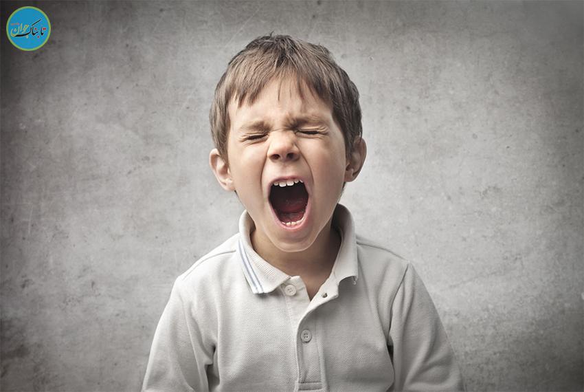 چرا نوجوان ها بد اخلاق و پرخاشگر میشوند؟