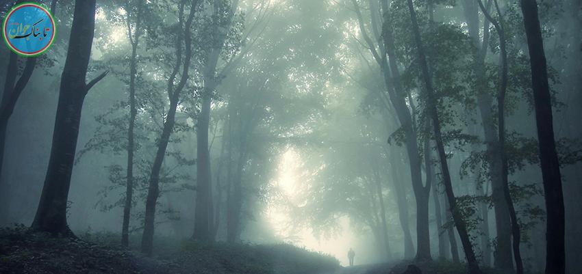 جنگلی در ایران که جیغ میکشد