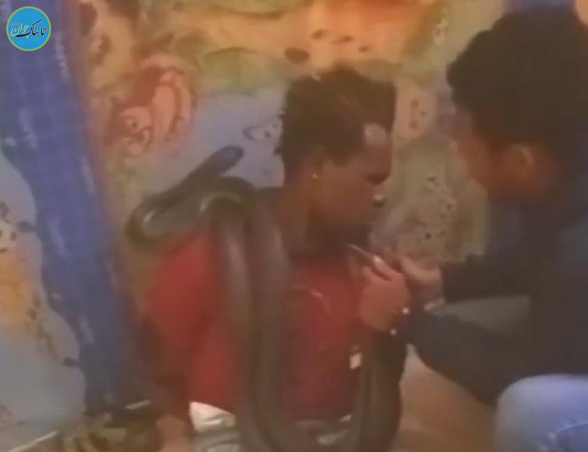 بازجویی پلیس با مار زنده دومتری