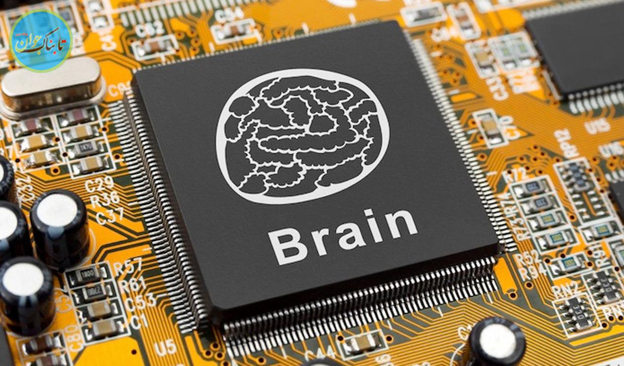 آپلود مغز روی یک رایانه برای رسیدن به جاودانگی!