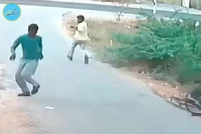 بسته خبری: لحظه نفس گیر حمله مار وحشی به دوچرخه سوار !