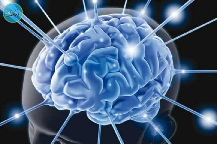 «مغز انسان» به کامپیوتر متصل میشود