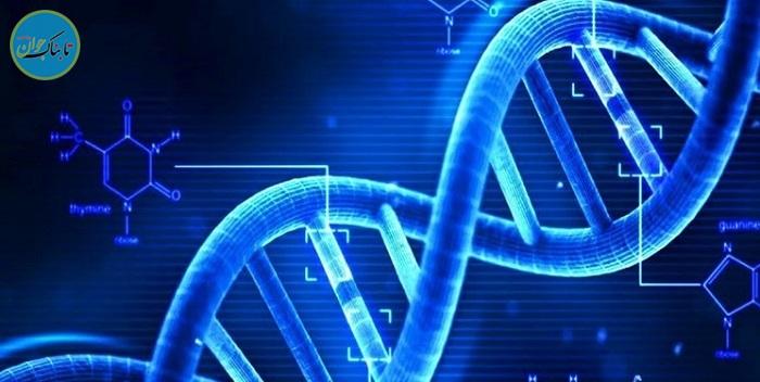 نخستین دستکاری ژنتیک سلولهای بنیادی در بدن