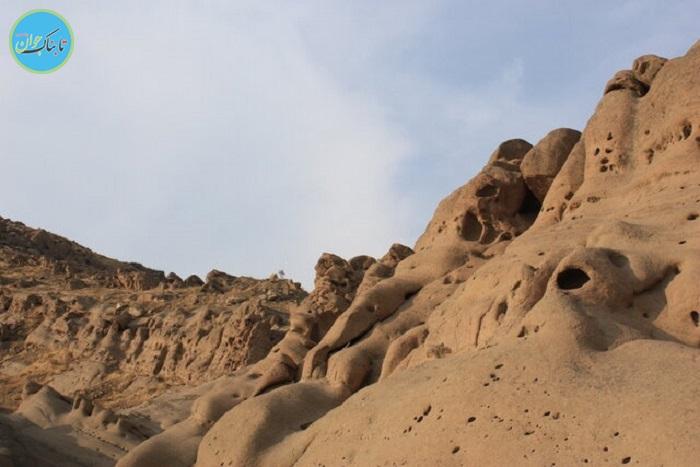 بسته خبری : کولاک سرو قامتان در ارومیه
