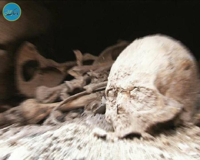بسته خبری : اعلام دلیل تیراندازی در چند نقطه از تهران