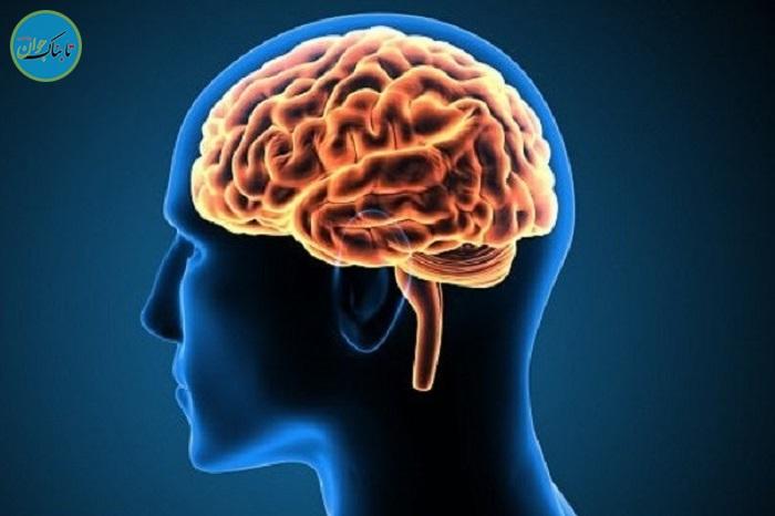 مردی که با نصف مغزش زنده است!