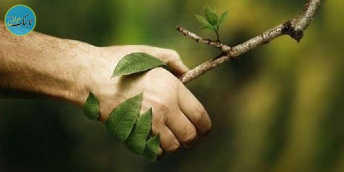 به نفع طبیعت انصراف دهیم
