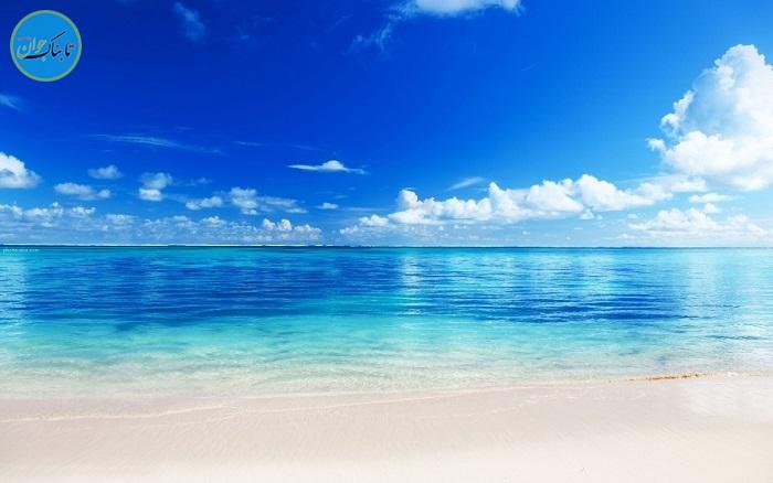 استتار فوق العاده در اعماق دریا