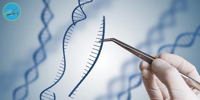 تغییر ژنتیکی دو میلیون سال قبل عامل بیماریهای قلبی انسان