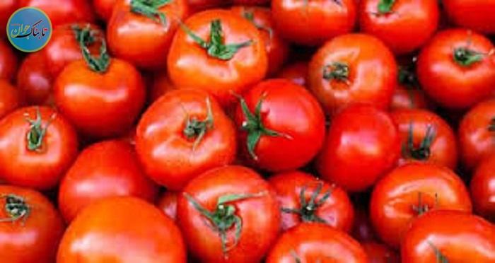 گوجه ارزان شد امان از گرانی رب