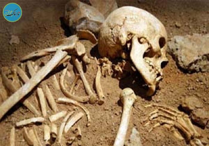 نبش قبر اموات برای سرقت استخوانهای مُردگان!