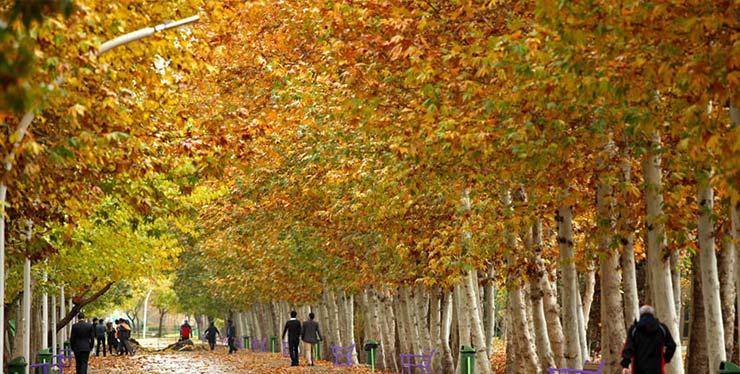 پاییز خیابان ولیعصر تهران
