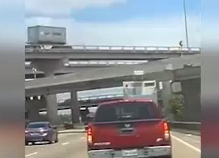 سوانح رانندگی