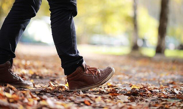 چرا پیادهروی روزانه به کاهش وزن منجر نمیشود
