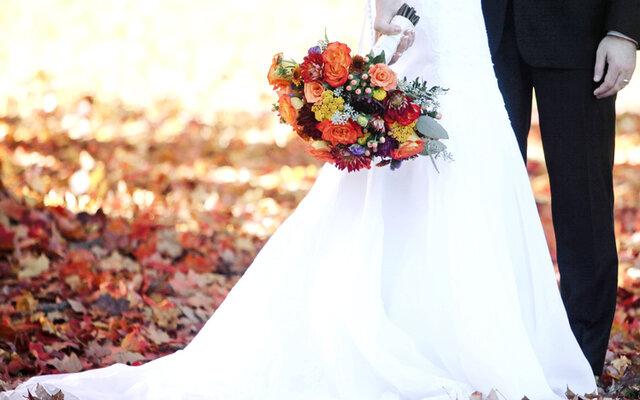 عروسی مجللی که به دعوا دسته جمعی تبدیل شد