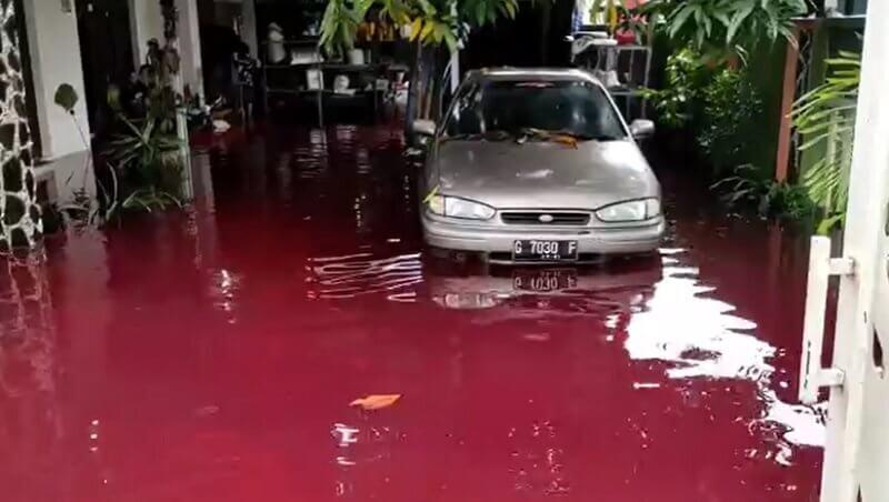 سیل قرمز در اندونزی