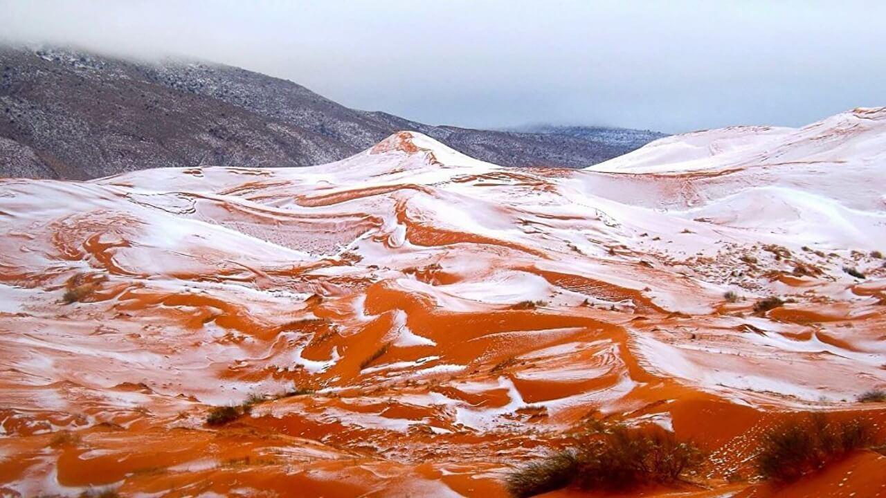برف قهوه ای در عربستان