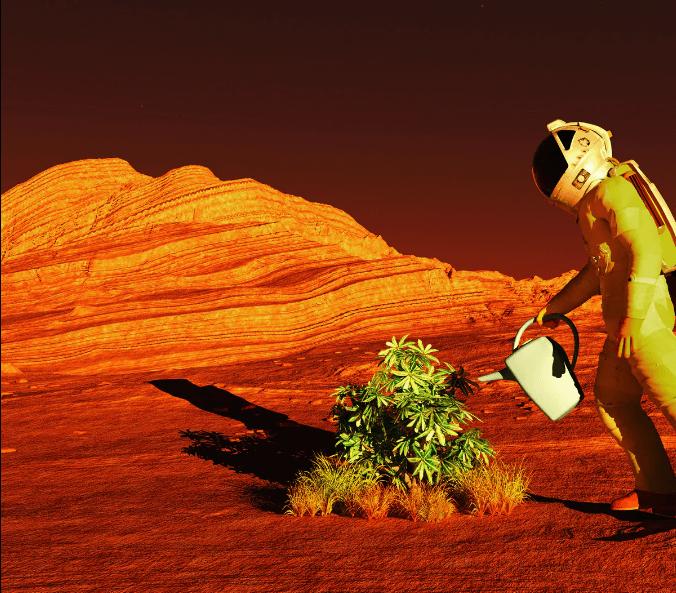 کاشت گیاه در مریخ